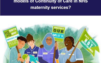 """Newsletter 9: """"Safe spaces, not forgotten spaces"""": Are Midwifery Units at risk as we move towards models of Continuity of Care in NHS maternity services?"""